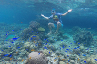 Moalboal Pescador Island Cebu